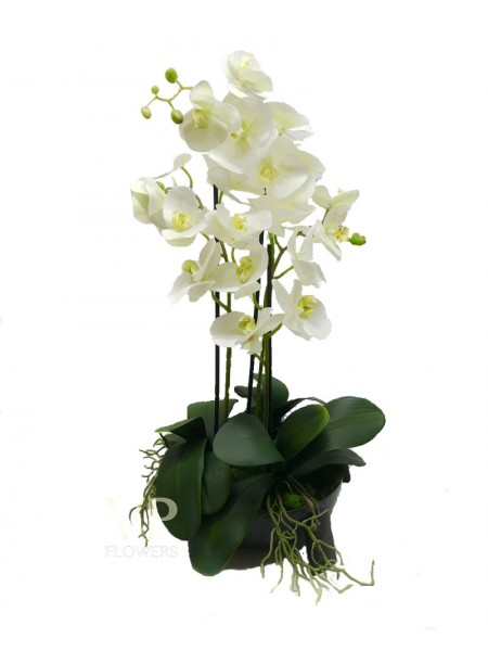 Artificial White Phalaenopsis Orchid