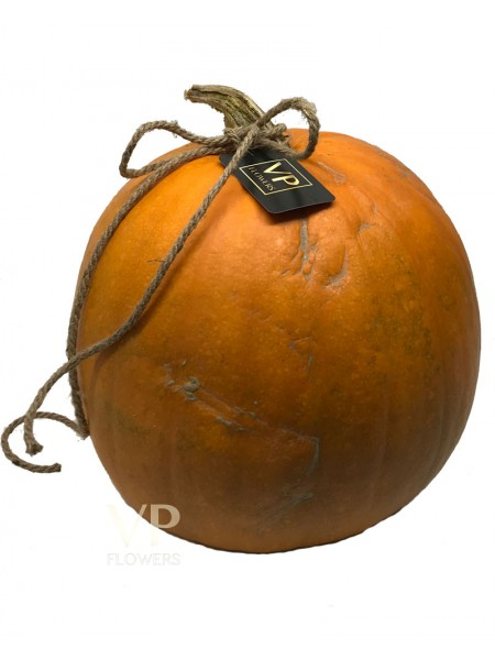 Irish Grown Pumpkin