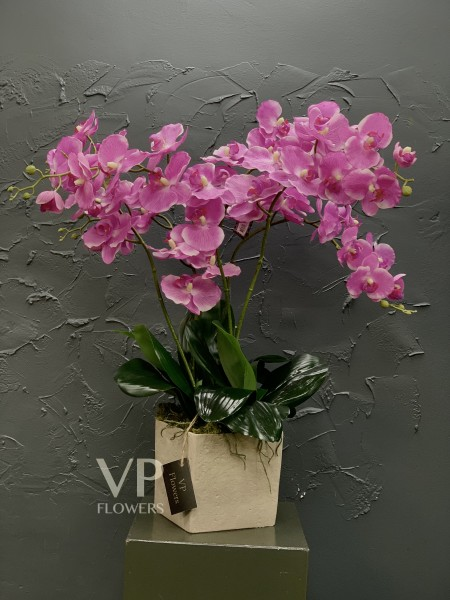 Artificial Pink Phalaenopsis Orchid