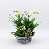 House Plant Gift White