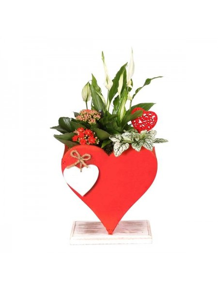 Love Heart Planter