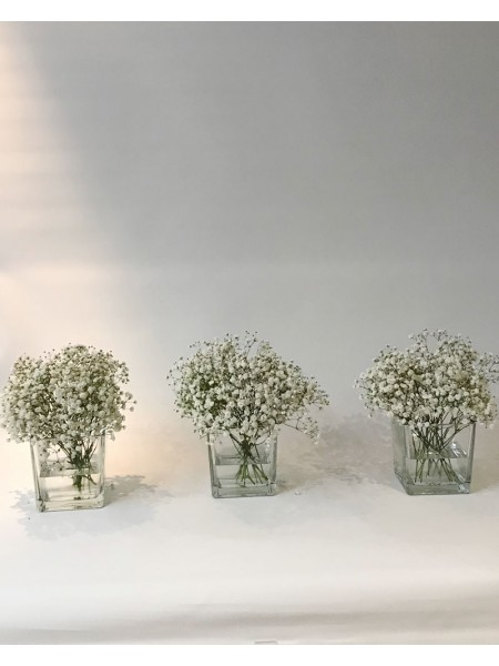 Gypsophila Centerpiece